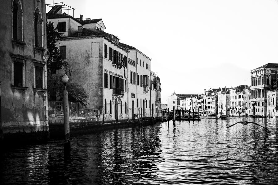 #23 The streets of Venice