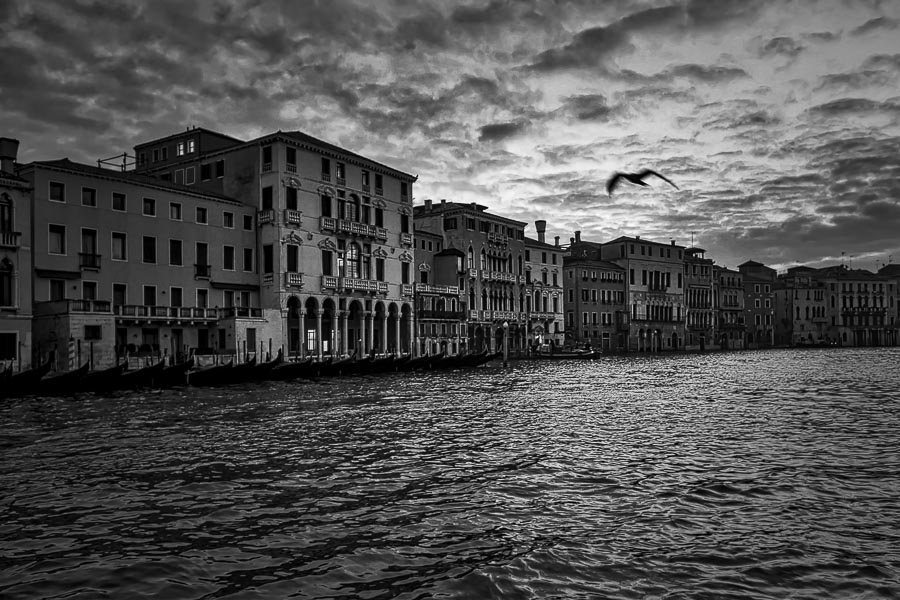 #41 The streets of Venice